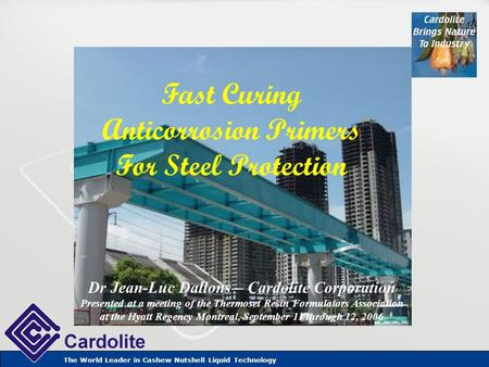 The World Leader in Cashew Nutshell Liquid Technology Fast Curing Anticorrosion Primers For Steel Protection Dr Jean-Luc Dallons – Cardolite Corporation.