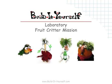 Www.Build-It-Yourself.com Laboratory Fruit Critter Mission.