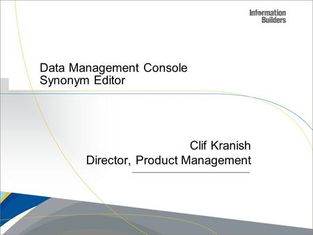 Data Management Console Synonym Editor