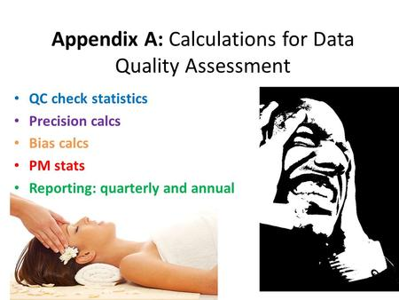 Appendix A: Calculations for Data Quality Assessment QC check statistics Precision calcs Bias calcs PM stats Reporting: quarterly and annual.