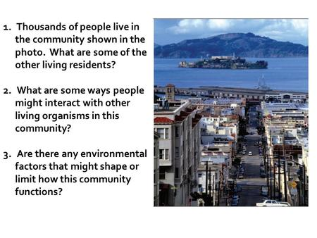 1. Thousands of people live in the community shown in the photo. What are some of the other living residents? 2. What are some ways people might interact.