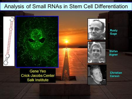 Stefan Aigner Christian Carson Rusty Gage Gene Yeo Crick-Jacobs Center Salk Institute Analysis of Small RNAs in Stem Cell Differentiation.