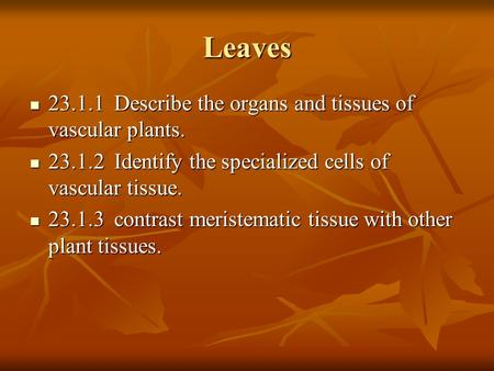 Leaves Describe the organs and tissues of vascular plants.