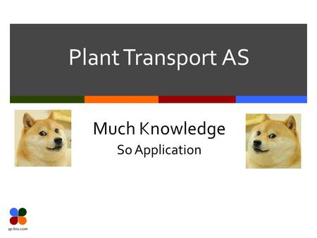 Plant Transport AS Much Knowledge So Application.