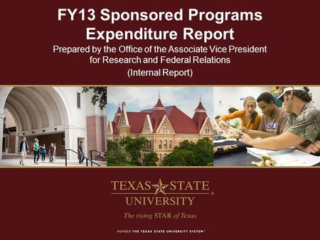 FY13 Sponsored Programs Expenditure Report Prepared by the Office of the Associate Vice President for Research and Federal Relations (Internal Report)