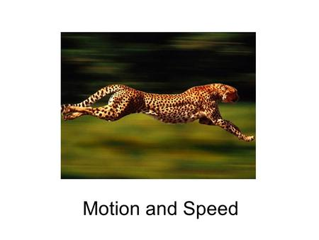 Motion and Speed. What is Motion? any physical movement or change in position or place, relative to a reference point Reference Point Movement.