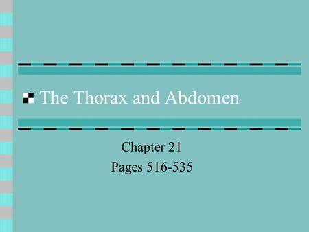 The Thorax and Abdomen Chapter 21 Pages 516-535. Anatomy of the Thorax Anatomy of the Thorax: The thorax is known as the chest, which lies between the.