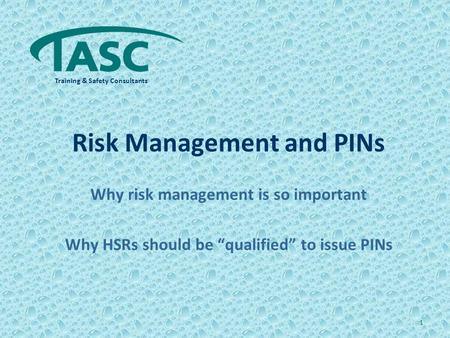 "Risk Management and PINs Why risk management is so important Why HSRs should be ""qualified"" to issue PINs 1 Training & Safety Consultants."