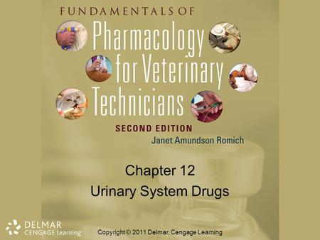 Chapter 12 Urinary System Drugs Copyright © 2011 Delmar, Cengage Learning.