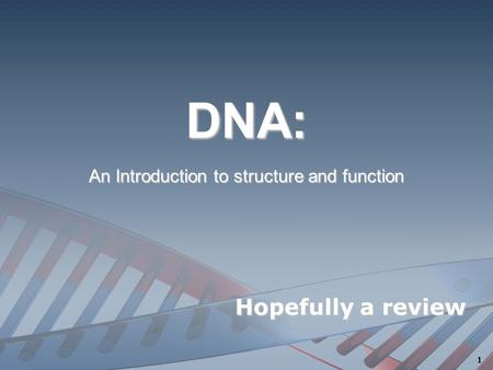 DNA:DNA: An Introduction to structure and function Hopefully a review 1.