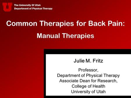 Common Therapies for Back Pain: