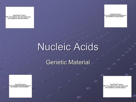Nucleic Acids Genetic Material. Nucleic Acids are macromolecules There are two main types: DNARNA.
