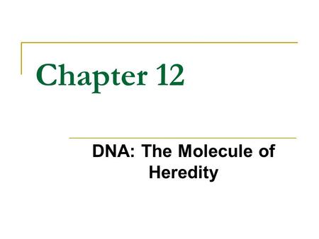 Chapter 12 DNA: The Molecule of Heredity. Objectives Analyze the structure of DNA Determine how the structure of DNA enables it to reproduce itself accurately.