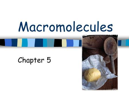 Macromolecules Chapter 5. Macromolecules Large complex molecules Carbohydrates, proteins, lipids & nucleic acids.
