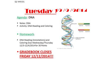 Tuesday 12/2/2014 Q2 WK6 D1 Agenda: DNA  Notes: DNA  Activity: DNA Reading and Coloring  Homework :  DNA Reading (Annotations) and Coloring Due Wednesday/Thursday.