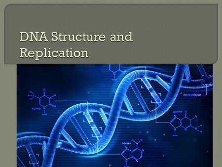  DNA (deoxyribonucleic acid) is a two stranded molecule called double helix  Each strand are made of smaller parts called nucleotides  The two strands.