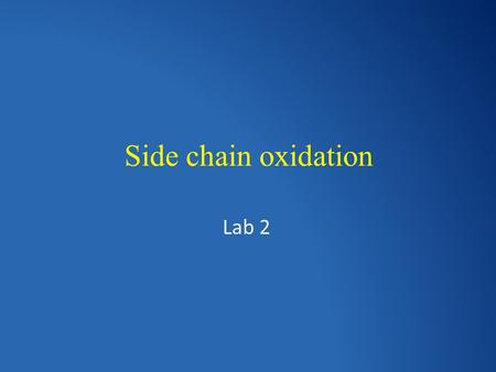 Side chain oxidation Lab 2. Side chain It's the aliphatic portion of the alkylbenzene.
