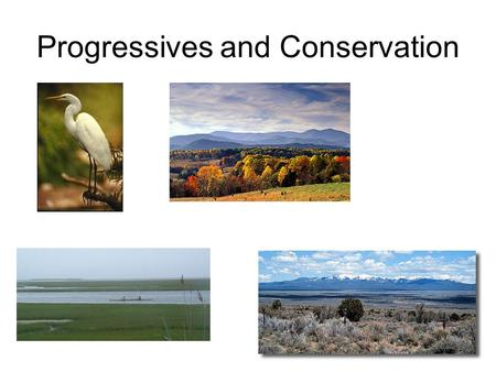 Progressives and Conservation. Progressives and the Wilderness Need to save the wilderness and environment Business interests would use up to make $ Congress.