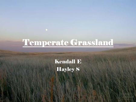 Temperate Grassland Kendall E Hayley S. Temperate Grassland Temperate grasslands are characterized by rolling hills and vast plains. (Miller, 137) They.