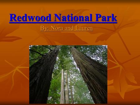 Redwood National Park By: Nora and Lauren. Location Redwood National Park is located in northernmost coastal California. Redwood National Park is located.