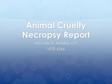 Animal Cruelty Necropsy Report Michelle A. Mobley, LVT VETE 4266.