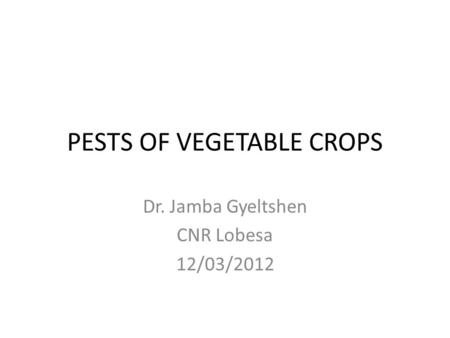 PESTS OF VEGETABLE CROPS Dr. Jamba Gyeltshen CNR Lobesa 12/03/2012.