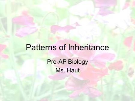 Patterns of Inheritance Pre-AP Biology Ms. Haut. Modern Theory of Heredity Based on Gregor Mendel's fundamental principles of heredity –Parents pass on.