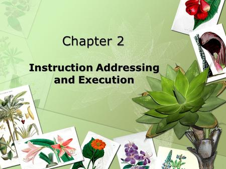 Chapter 2 Instruction Addressing and Execution. Lesson plan Review some concepts in the first week First assembly program with EMU8086 Related concepts.