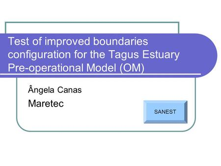Test of improved boundaries configuration for the Tagus Estuary Pre-operational Model (OM) Ângela Canas Maretec SANEST.