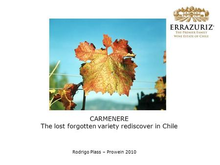 CARMENERE The lost forgotten variety rediscover in Chile Rodrigo Plass – Prowein 2010.