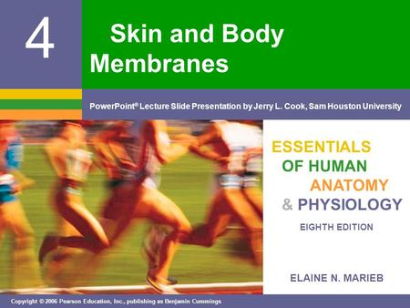 ELAINE N. MARIEB EIGHTH EDITION 4 Copyright © 2006 Pearson Education, Inc., publishing as Benjamin Cummings PowerPoint ® Lecture Slide Presentation by.