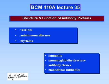 BCM 410A lecture 35 immunity immunoglobulin structure antibody classes monoclonal antibodies immunity immunoglobulin structure antibody classes monoclonal.