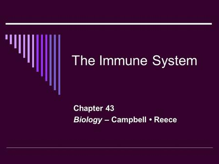 Chapter 43 Biology – Campbell • Reece