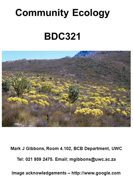 Community Ecology BDC321 Mark J Gibbons, Room 4.102, BCB Department, UWC Tel: 021 959 2475.   Image acknowledgements –