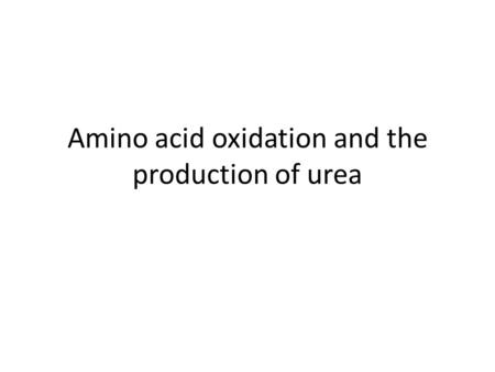 Amino acid oxidation and the production of urea. Catabolism of proteins and aa nitrogen How the nitrogen of aa is converted to urea and the rare disorders.