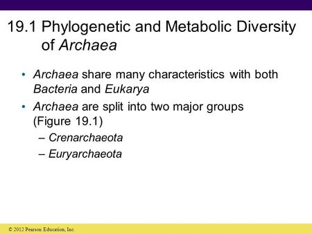 19.1 Phylogenetic and Metabolic Diversity of Archaea Archaea share many characteristics with both Bacteria and Eukarya Archaea are split into two major.