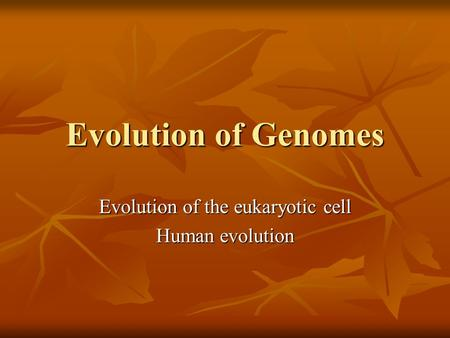 Evolution of Genomes Evolution of the eukaryotic cell Human evolution.