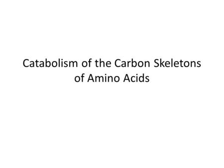 Catabolism of the Carbon Skeletons of Amino Acids