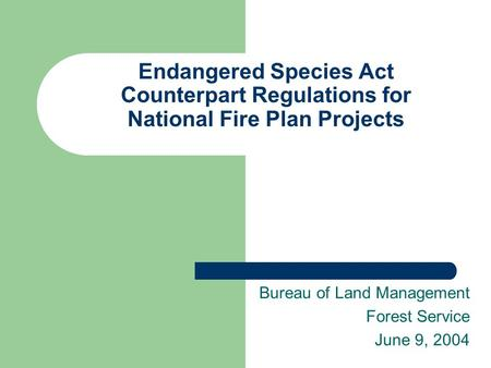 Endangered Species Act Counterpart Regulations for National Fire Plan Projects Bureau of Land Management Forest Service June 9, 2004.