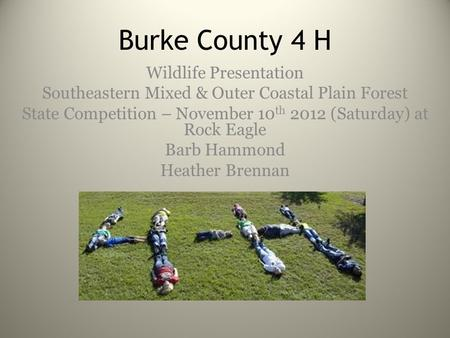 Burke County 4 H Wildlife Presentation Southeastern Mixed & Outer Coastal Plain Forest State Competition – November 10 th 2012 (Saturday) at Rock Eagle.