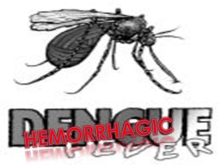 HHemorrhagic dengue DDengue shock syndrome HH - Fever BBreakbone fever ddandy fever.