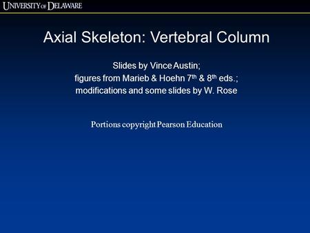 Axial Skeleton: Vertebral Column