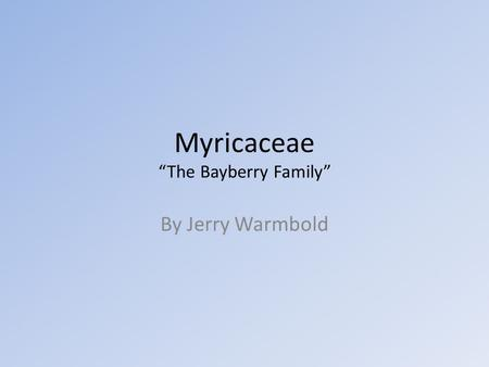 "Myricaceae ""The Bayberry Family"" By Jerry Warmbold."