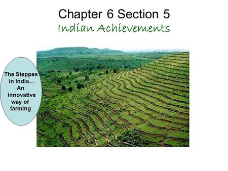 Chapter 6 Section 5 Indian Achievements The Steppes in India… An innovative way of farming.