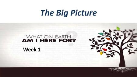 "The Big Picture Week 1. What on Earth am I here for?  Question #1: Why Am I Alive? Ecclesiastes 1:2 ""Meaningless! Meaningless!"" Says the Teacher, ""Utterly."