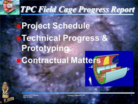 ALICE-LHCC Review May 14, 2001 Thomas C. Meyer/EP-AIT1 TPC Field Cage Progress Report Project Schedule Technical Progress & Prototyping Contractual Matters.