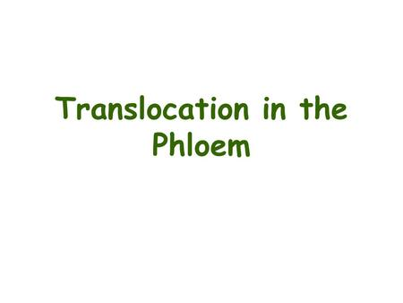 Translocation in the Phloem. Phloem transport A highly specialized process for redistributing: –Photosynthesis products –Other organic compounds (metabolites,