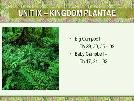 UNIT IX – KINGDOM PLANTAE Big Campbell – Ch 29, 30, 35 – 39 Baby Campbell – Ch 17, 31 – 33.