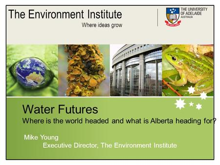 The Environment Institute Where ideas grow Water Futures Where is the world headed and what is Alberta heading for? Mike Young Executive Director, The.