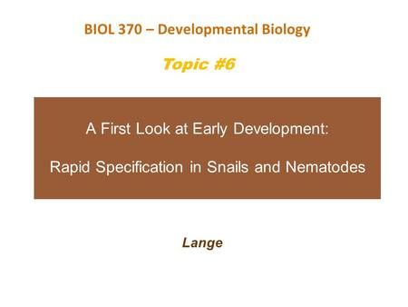 BIOL 370 – Developmental Biology